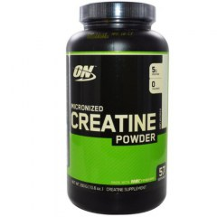 Optimum Nutrition Creatine Powder (image)