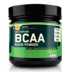 Optimum Nutrition BCAA 5000 Powder (image)